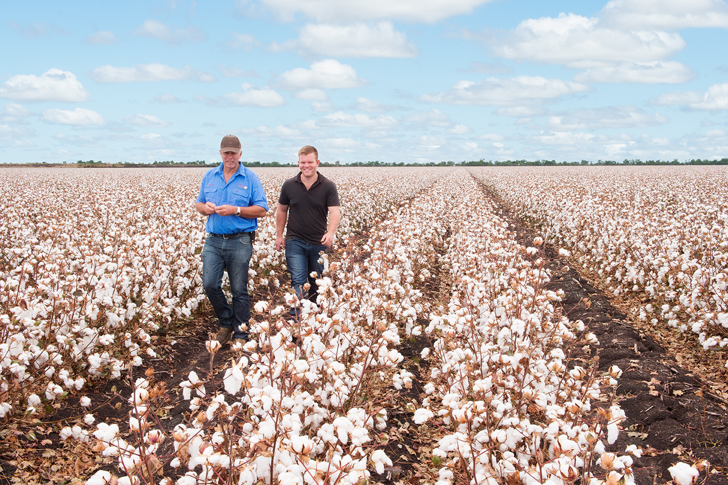 Cotton Armitage Toowoomba, A vibrant industry