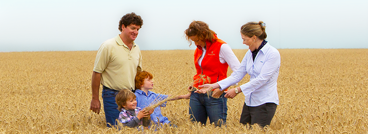 Family standing in a wheat field with Rabobank Staff